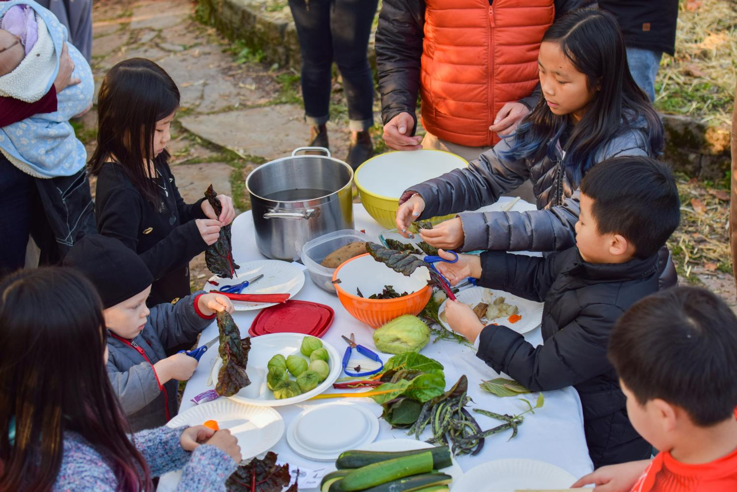 After searching for and harvesting the vegetables, the children learn how to cut and prepare them.