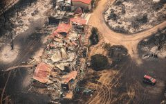 Five Ways to Support the Australian Bushfire Crisis
