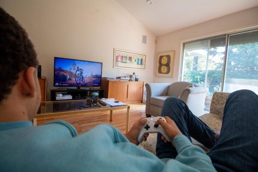 Animal crossing_ video games2